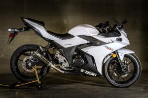 2018 GSX 250R Slip On Carbon